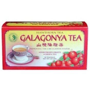 GALAGONYA TEA FILTERES /ORIENTAL/ 20 g