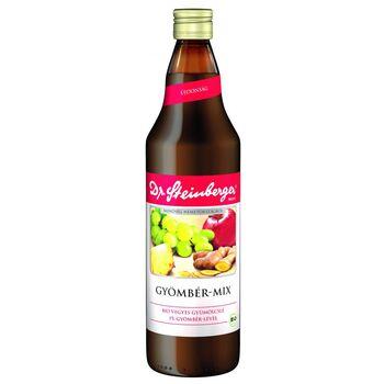 Dr.Steinberger Gyömbér-Mix Bio 750 ml