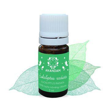 ANANDAM Bio eukaliptus radiata illóolaj -5 ml